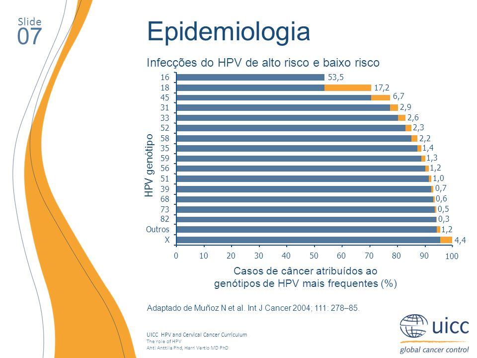 Casos de câncer atribuídos ao genótipos de HPV mais frequentes (%)