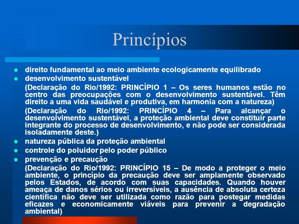 Princípios direito fundamental ao meio ambiente ecologicamente equilibrado. desenvolvimento sustentável.