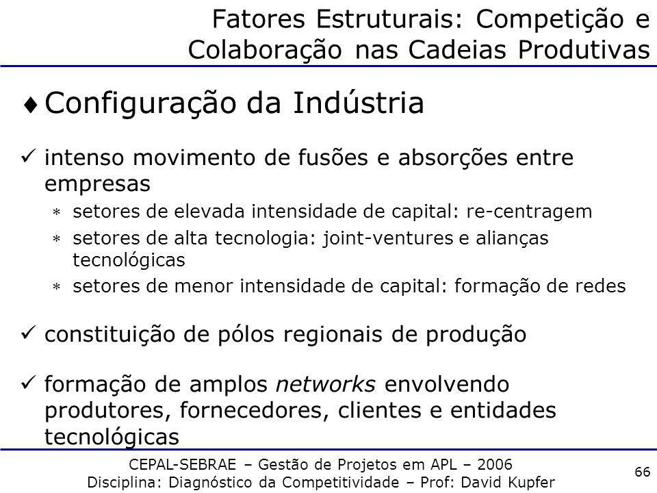 Fatores Estruturais: Competição e Colaboração nas Cadeias Produtivas