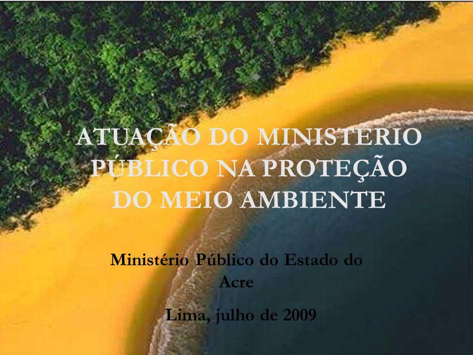 ATUAÇÃO DO MINISTÉRIO PÚBLICO NA PROTEÇÃO DO MEIO AMBIENTE