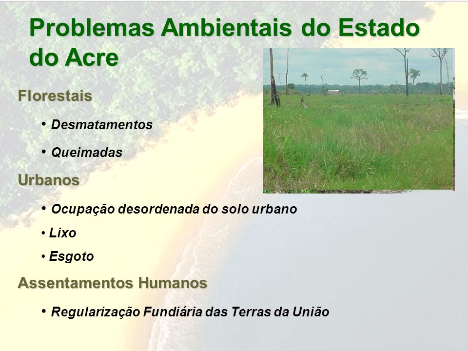 Problemas Ambientais do Estado do Acre