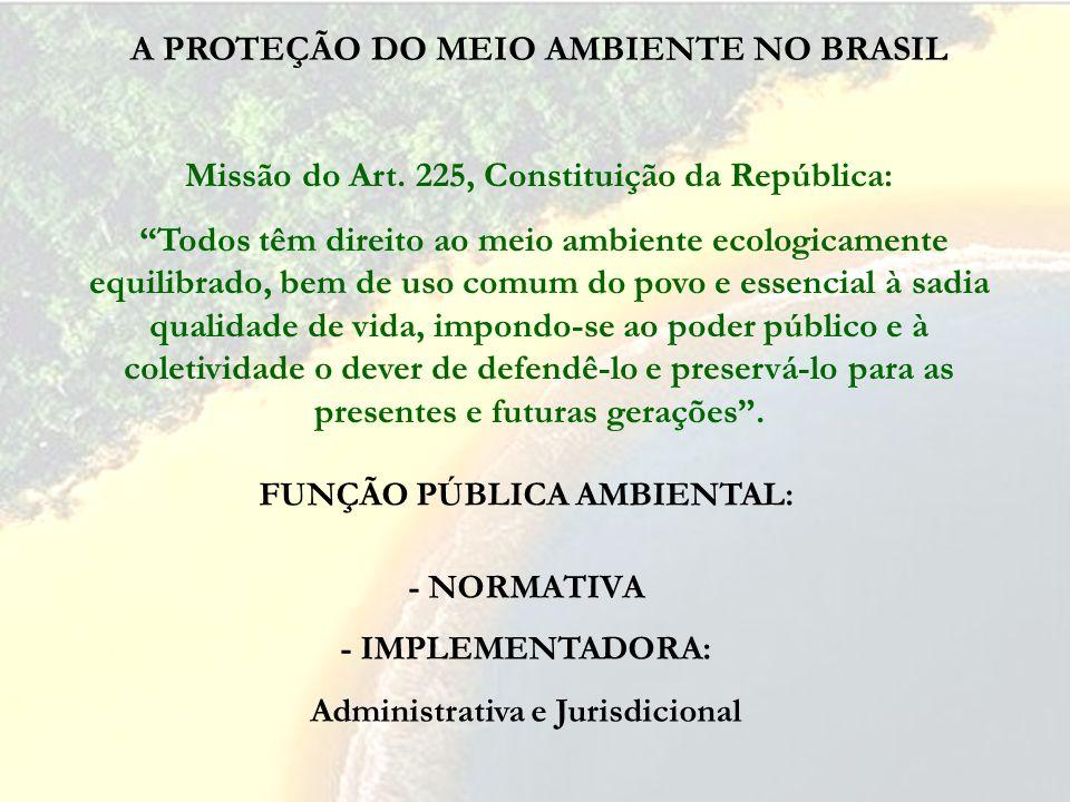 A PROTEÇÃO DO MEIO AMBIENTE NO BRASIL