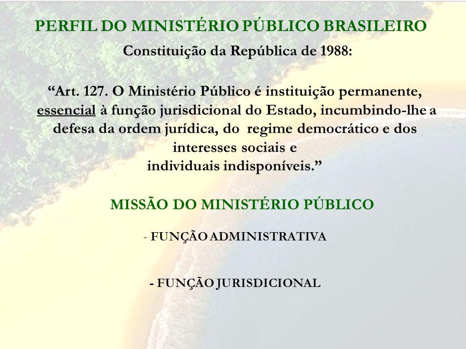 PERFIL DO MINISTÉRIO PÚBLICO BRASILEIRO