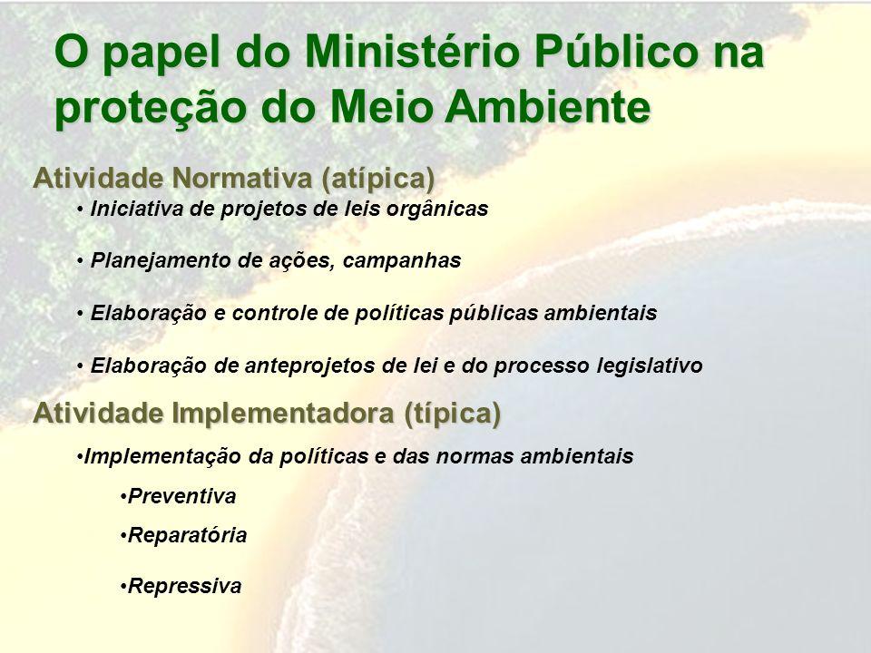 O papel do Ministério Público na proteção do Meio Ambiente