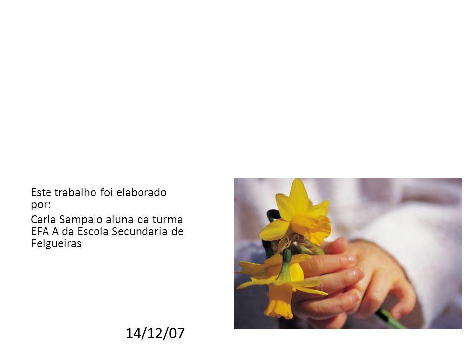 14/12/07 Este trabalho foi elaborado por: