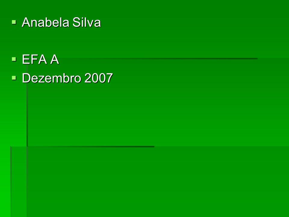 Anabela Silva EFA A Dezembro 2007