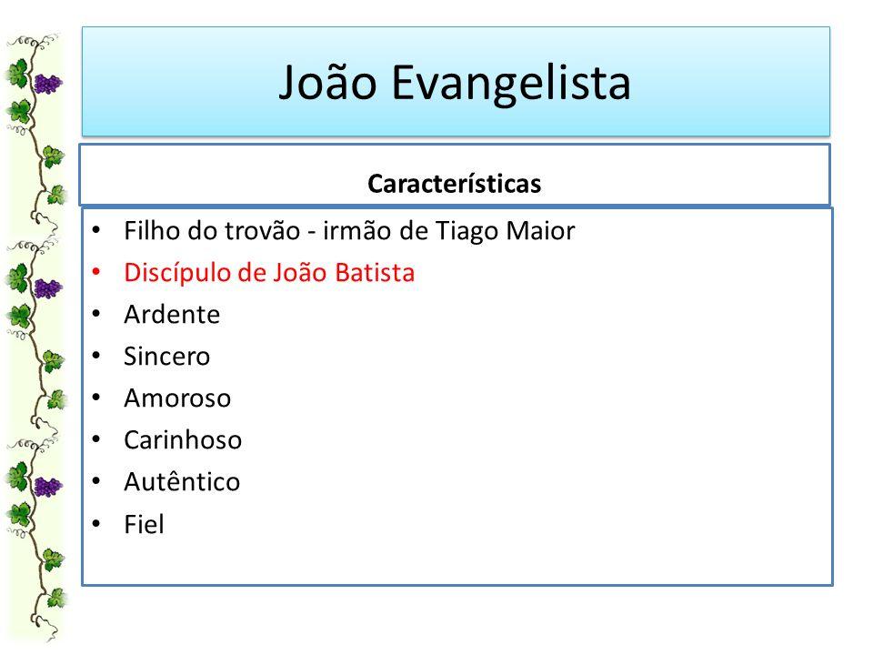 João Evangelista Características