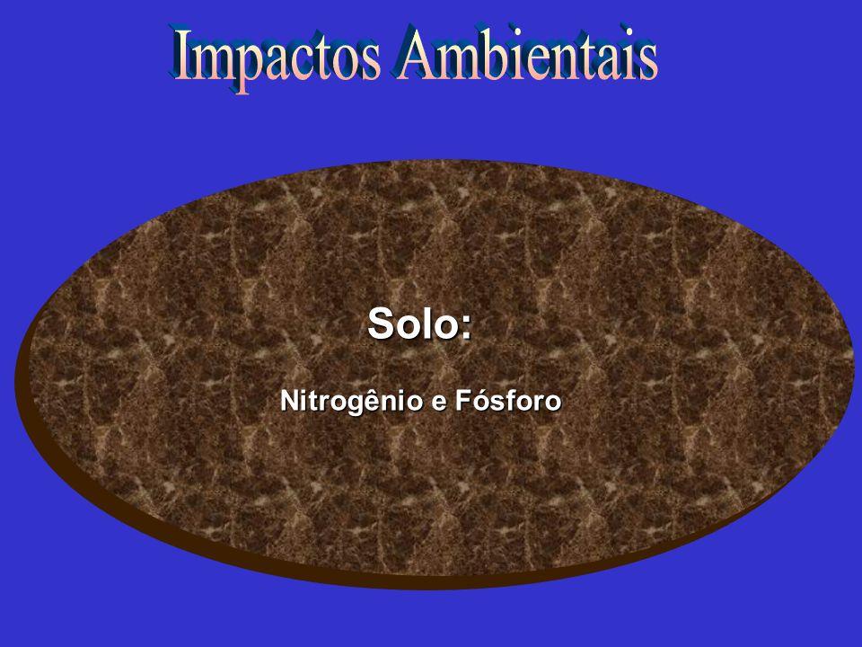 Impactos Ambientais Solo: Nitrogênio e Fósforo