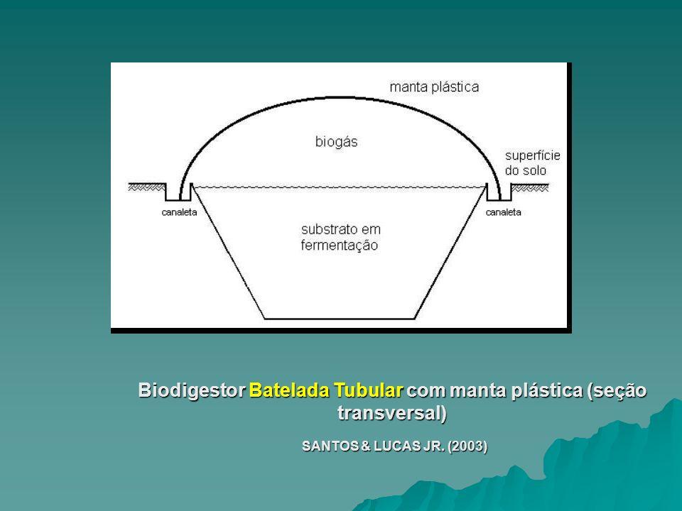 Biodigestor Batelada Tubular com manta plástica (seção transversal)