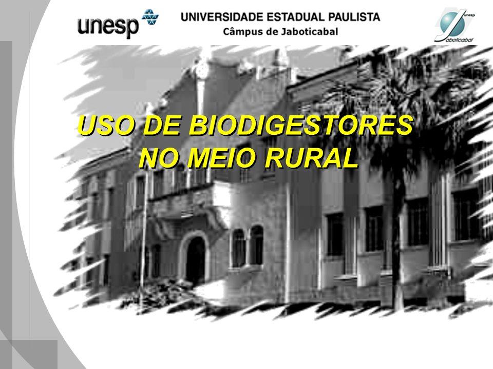 USO DE BIODIGESTORES NO MEIO RURAL
