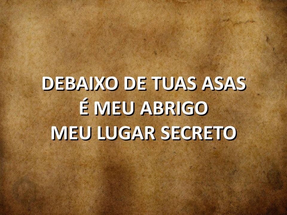 DEBAIXO DE TUAS ASAS É MEU ABRIGO MEU LUGAR SECRETO