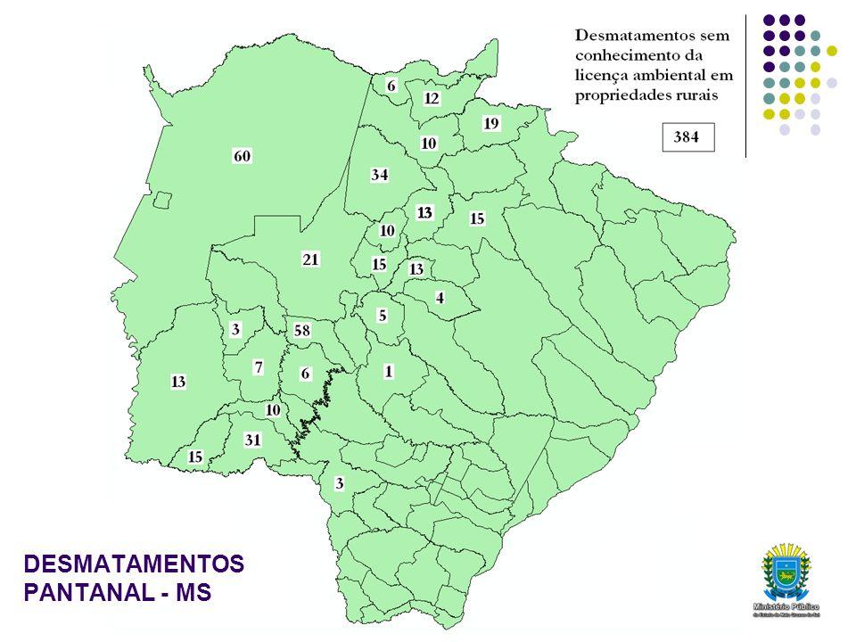 DESMATAMENTOS PANTANAL - MS
