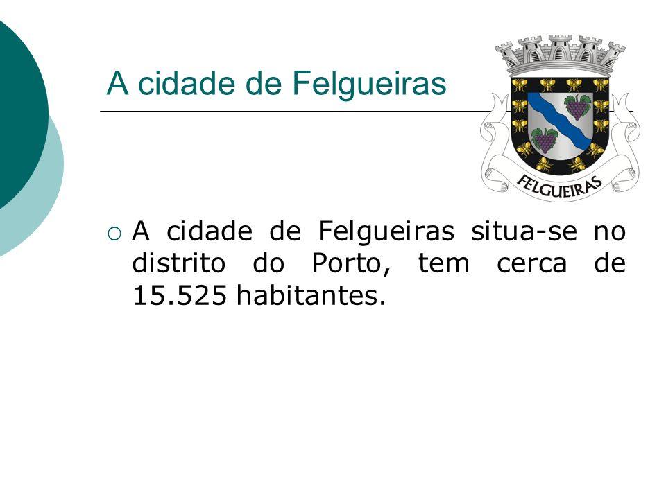 A cidade de Felgueiras A cidade de Felgueiras situa-se no distrito do Porto, tem cerca de 15.525 habitantes.
