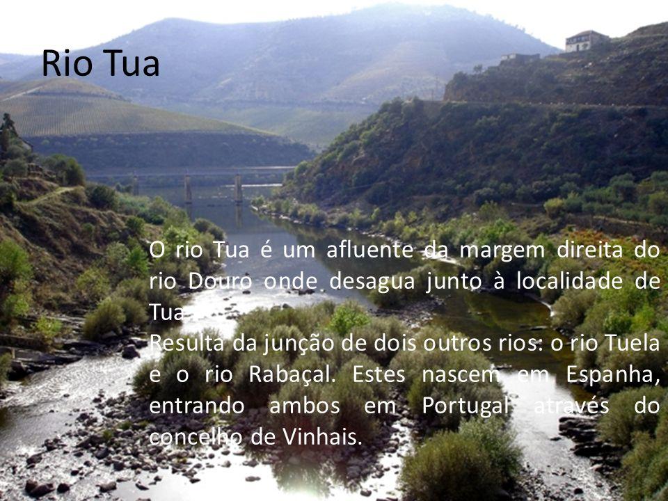 Rio Tua O rio Tua é um afluente da margem direita do rio Douro onde desagua junto à localidade de Tua.