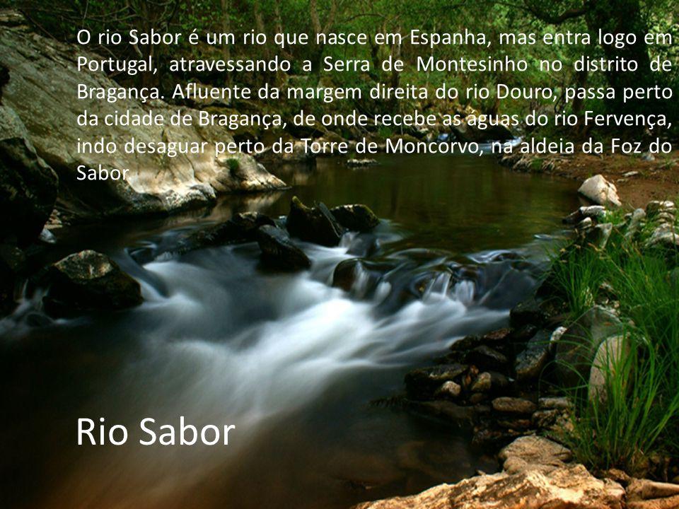 O rio Sabor é um rio que nasce em Espanha, mas entra logo em Portugal, atravessando a Serra de Montesinho no distrito de Bragança. Afluente da margem direita do rio Douro, passa perto da cidade de Bragança, de onde recebe as águas do rio Fervença, indo desaguar perto da Torre de Moncorvo, na aldeia da Foz do Sabor.
