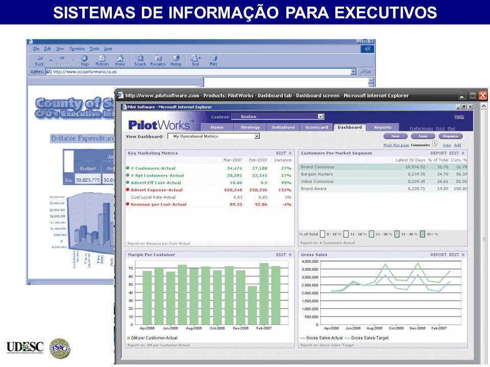 (EIS - Executive Information System)