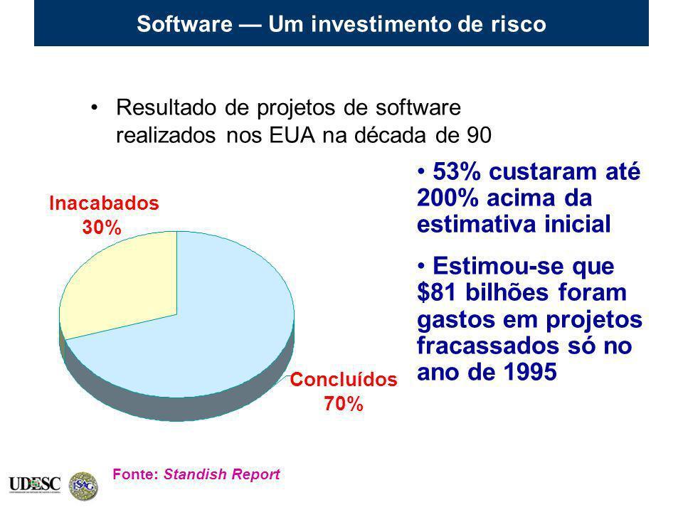 Software — Um investimento de risco