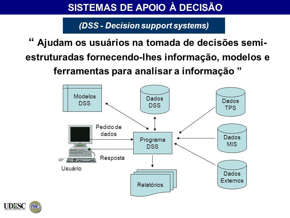 (DSS - Decision support systems)