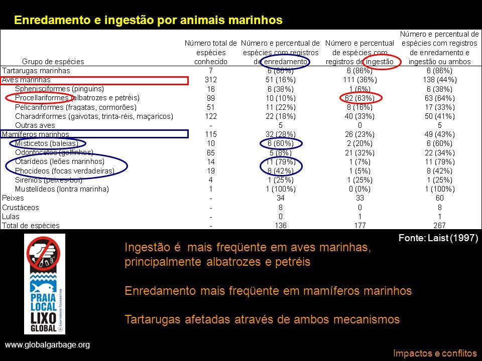 Enredamento e ingestão por animais marinhos
