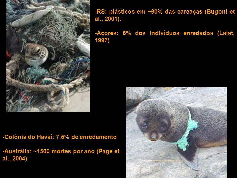 -RS: plásticos em ~60% das carcaças (Bugoni et al., 2001).