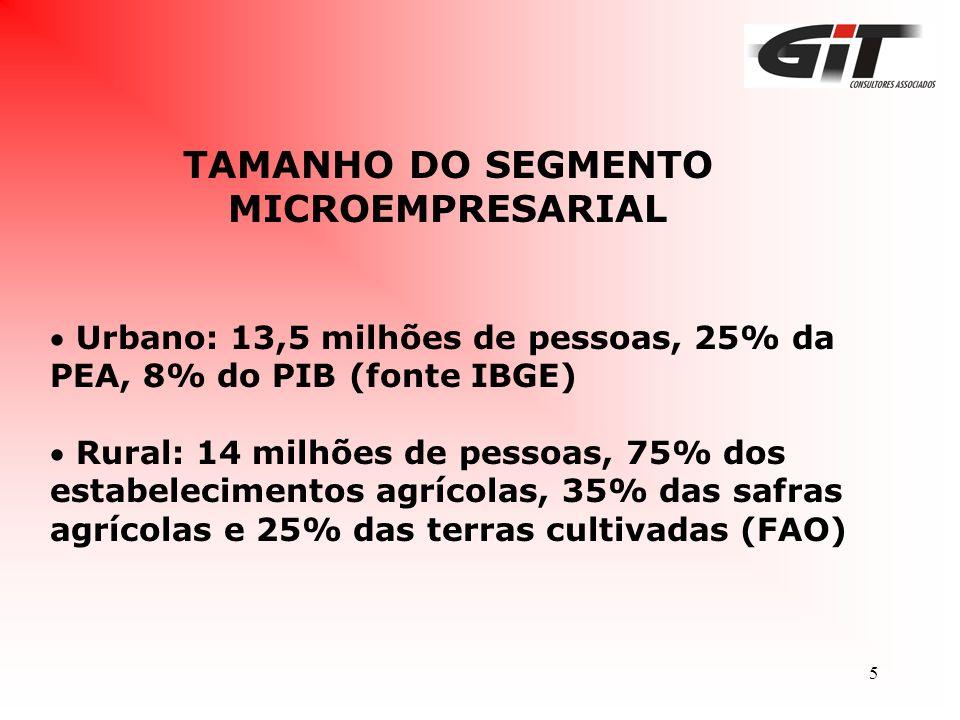 TAMANHO DO SEGMENTO MICROEMPRESARIAL