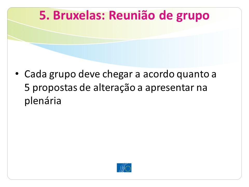 5. Bruxelas: Reunião de grupo