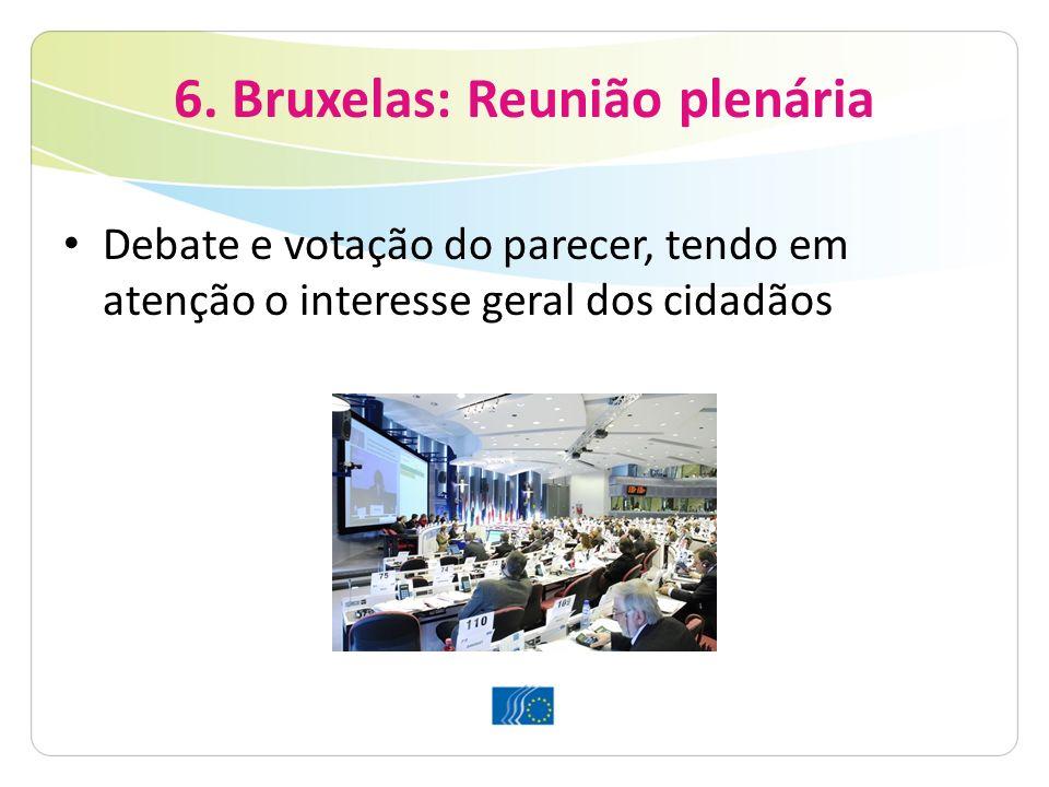 6. Bruxelas: Reunião plenária