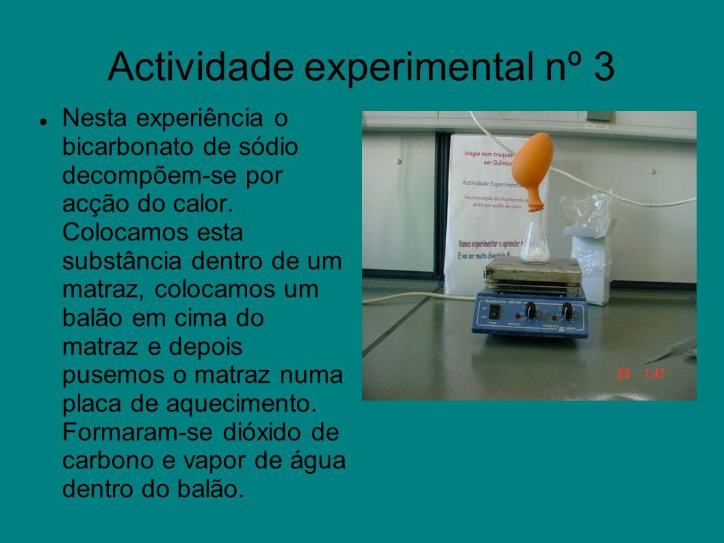 Actividade experimental nº 3