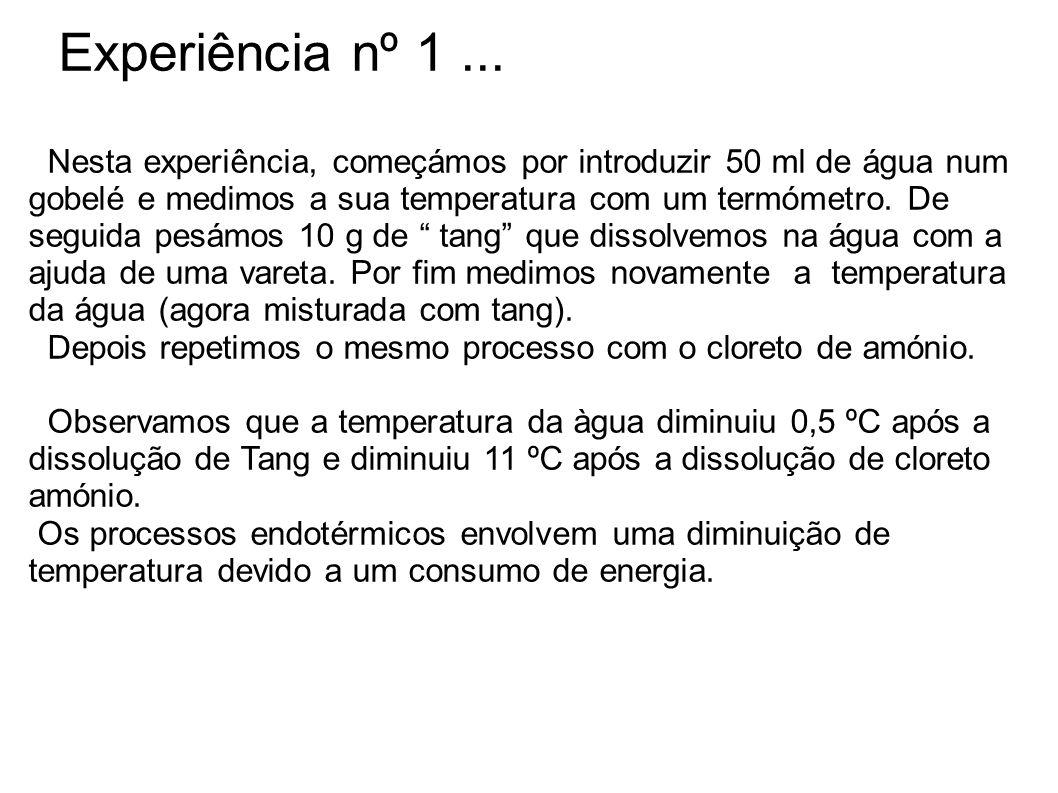 Experiência nº 1 ...