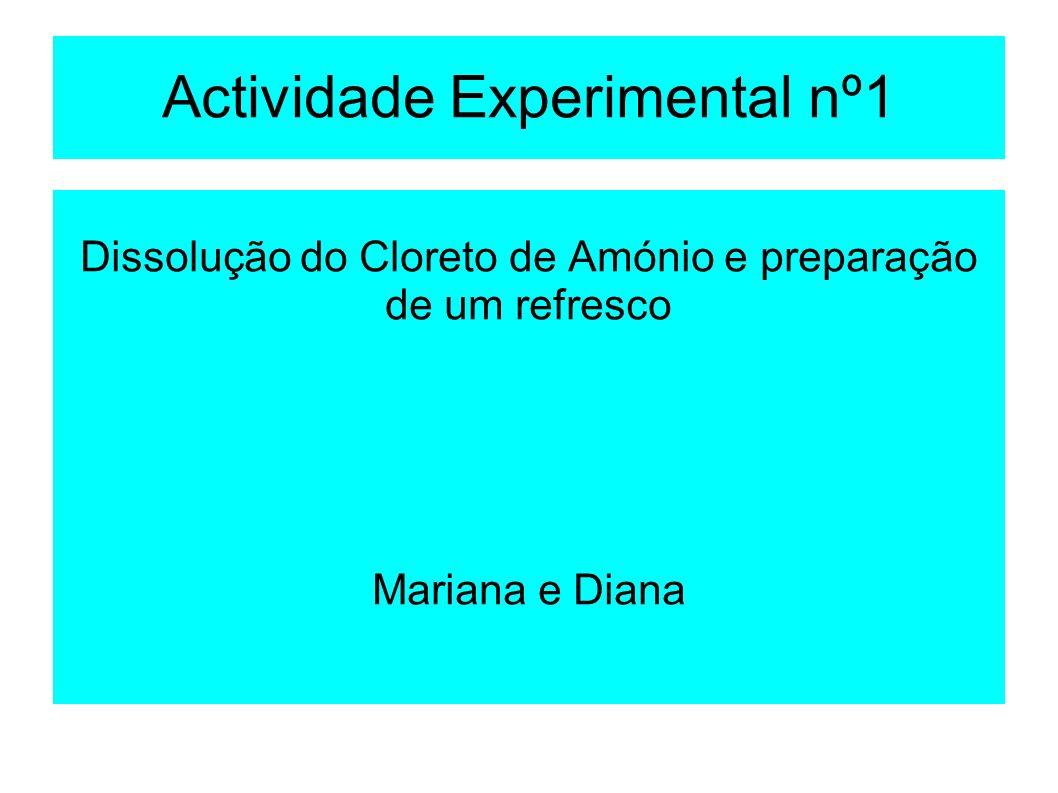 Actividade Experimental nº1