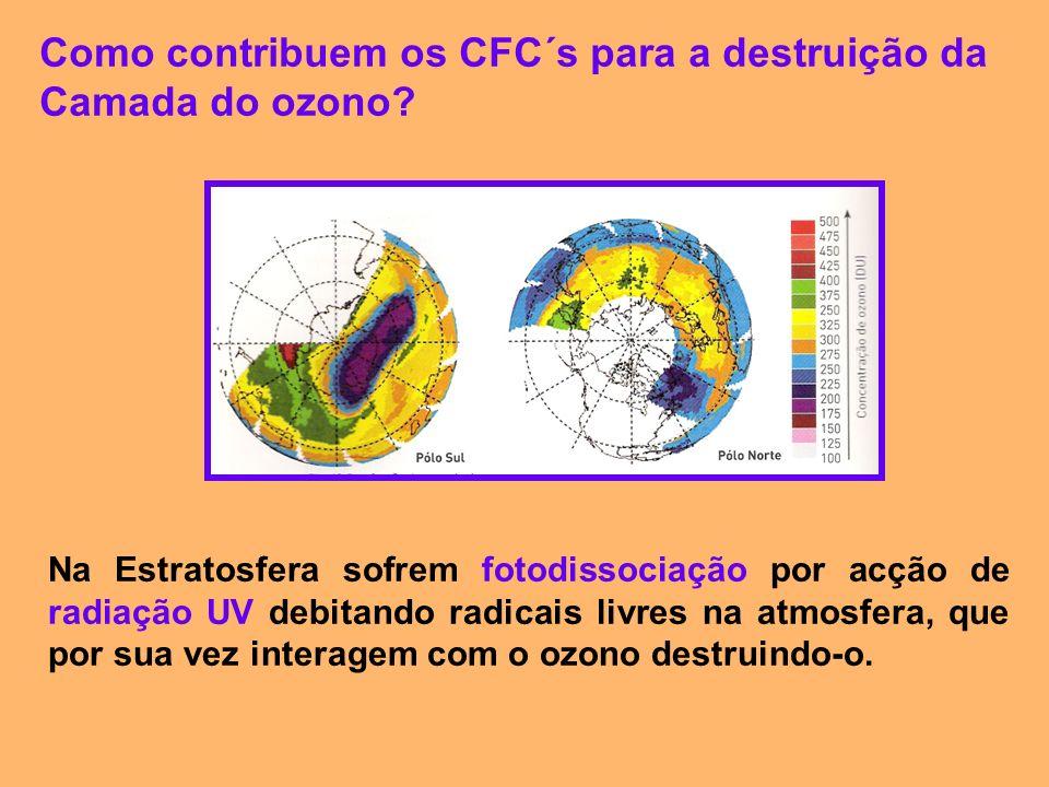 Como contribuem os CFC´s para a destruição da Camada do ozono