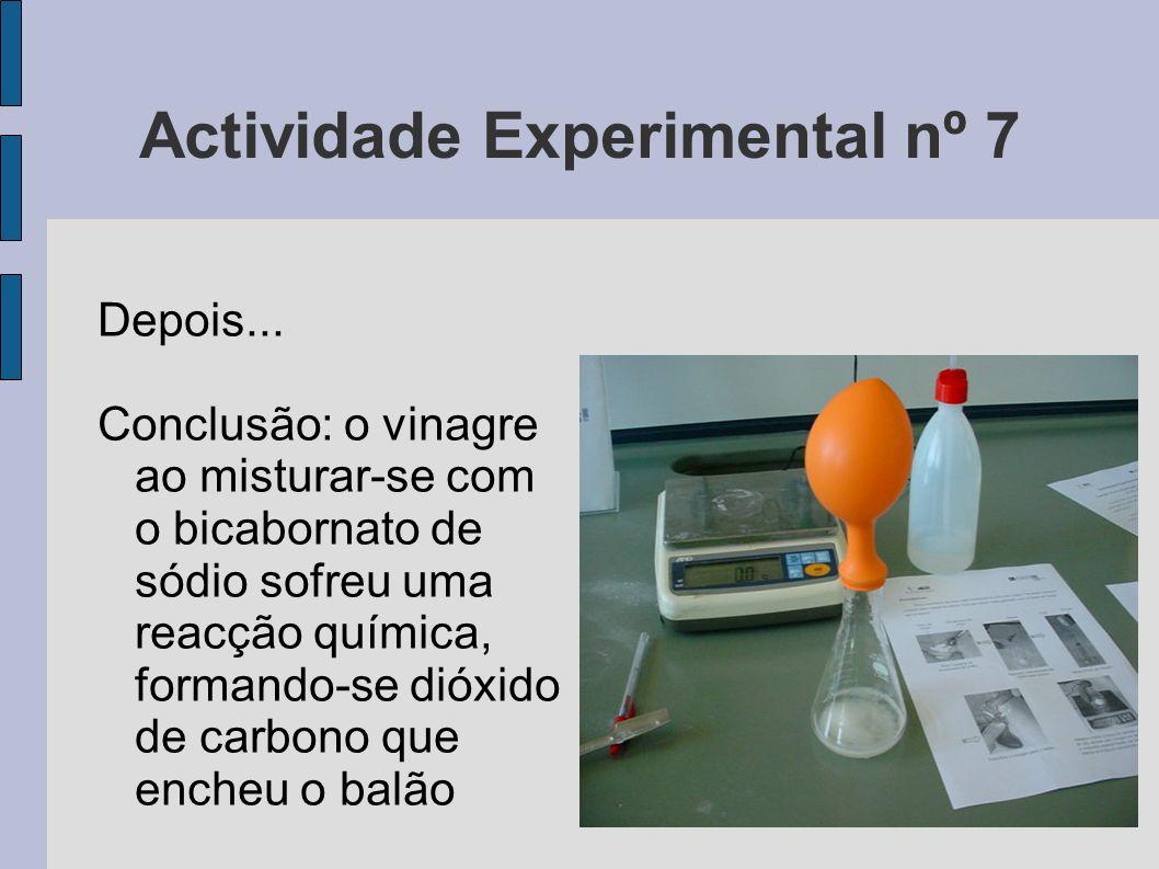 Actividade Experimental nº 7
