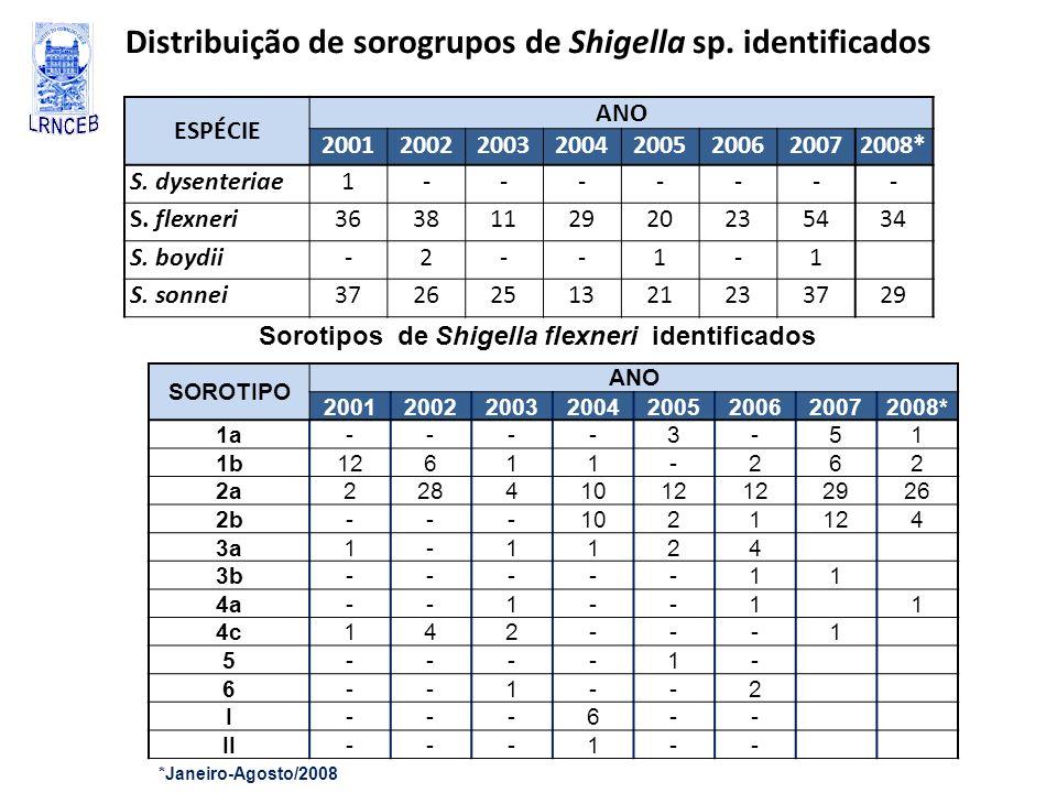 Distribuição de sorogrupos de Shigella sp. identificados
