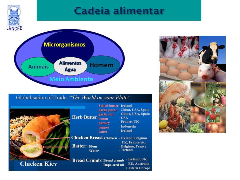 Microrganismos Animais Alimentos Água Homem Meio Ambiente