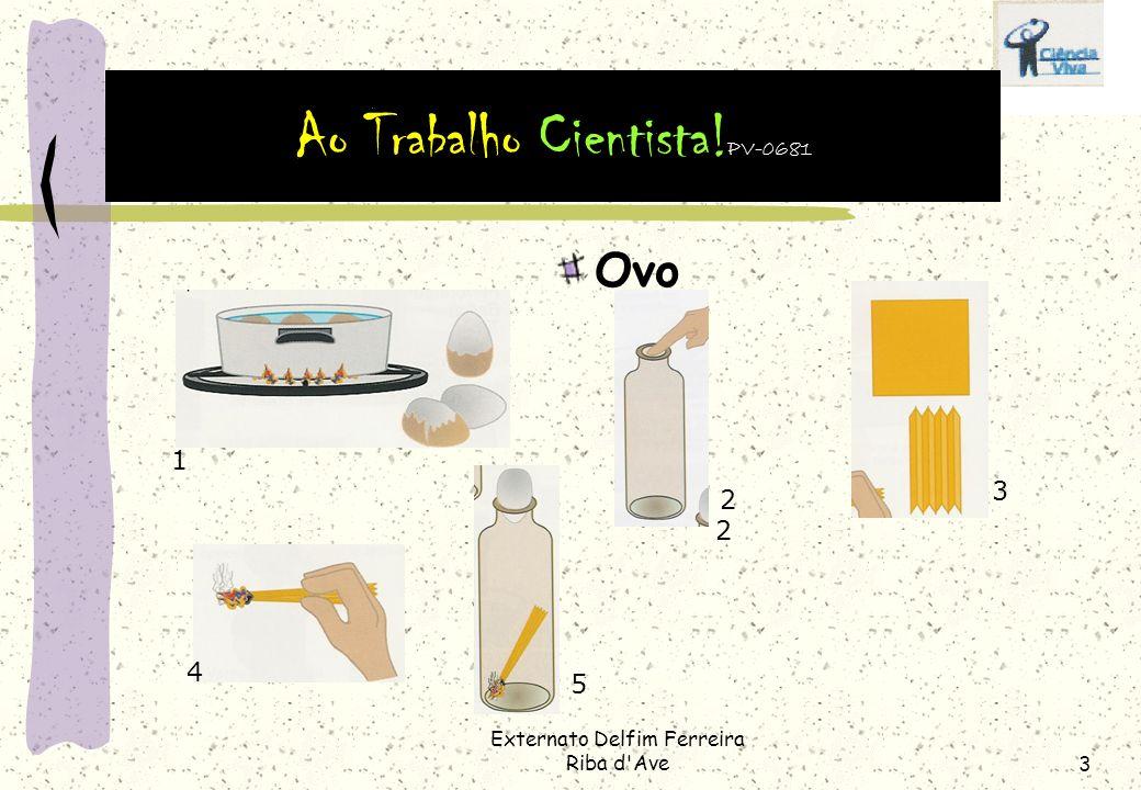 Ao Trabalho Cientista!PV-0681