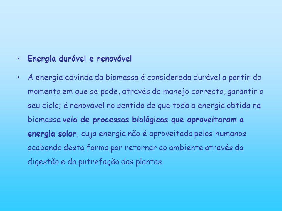 Energia durável e renovável