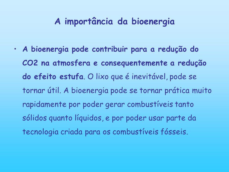 A importância da bioenergia