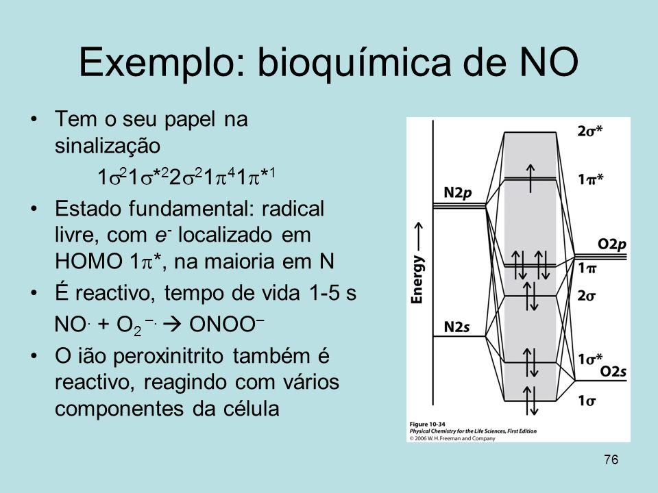 Exemplo: bioquímica de NO