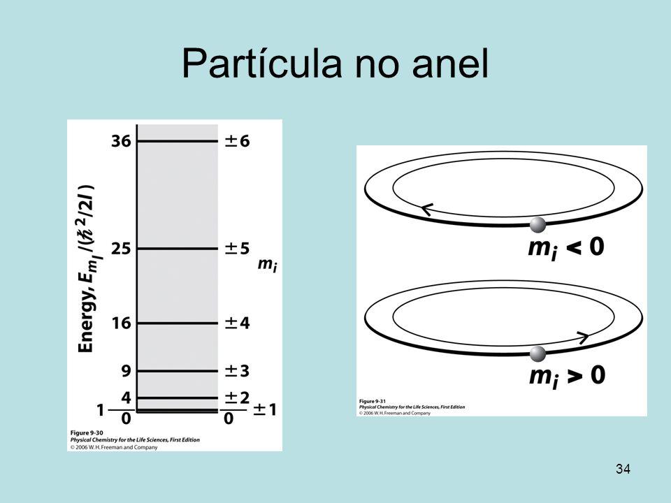 Partícula no anel