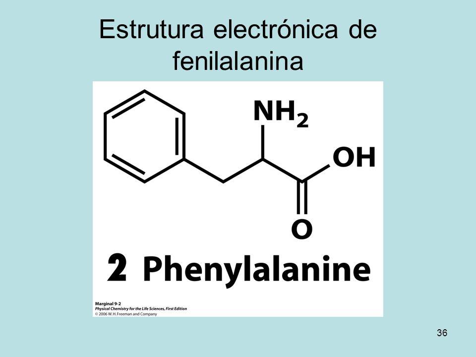 Estrutura electrónica de fenilalanina