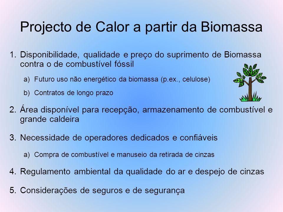 Projecto de Calor a partir da Biomassa