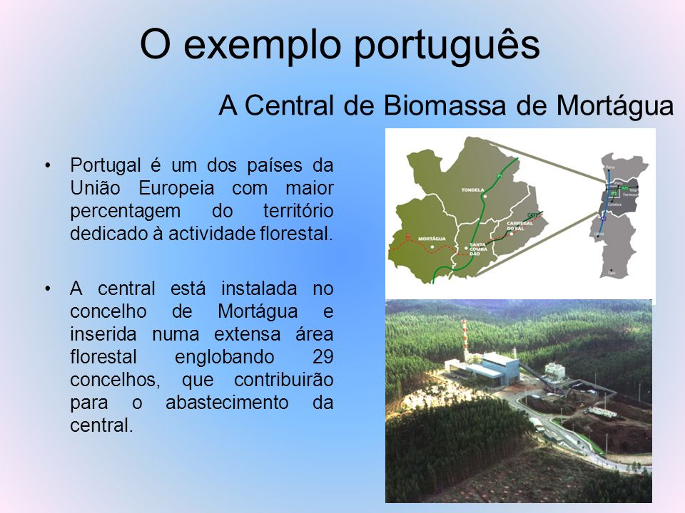 A Central de Biomassa de Mortágua