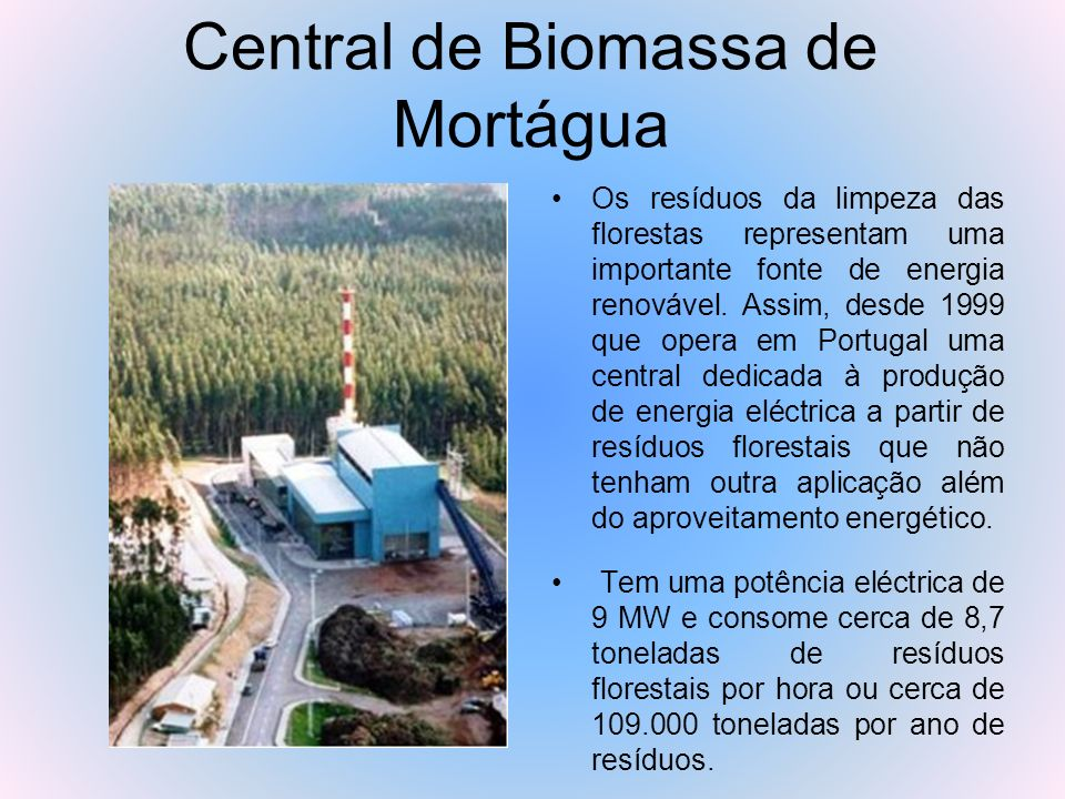 Central de Biomassa de Mortágua