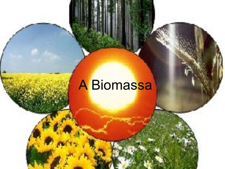 A Biomassa