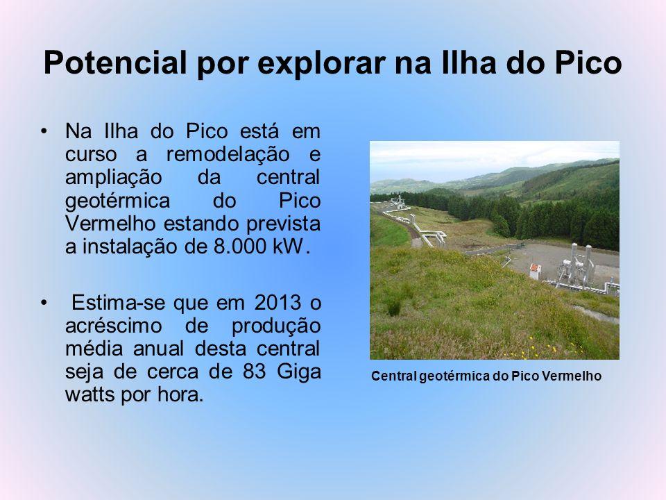 Potencial por explorar na Ilha do Pico
