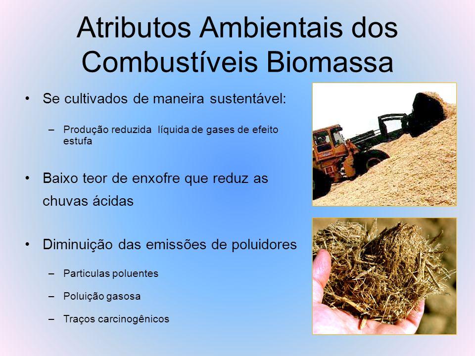 Atributos Ambientais dos Combustíveis Biomassa