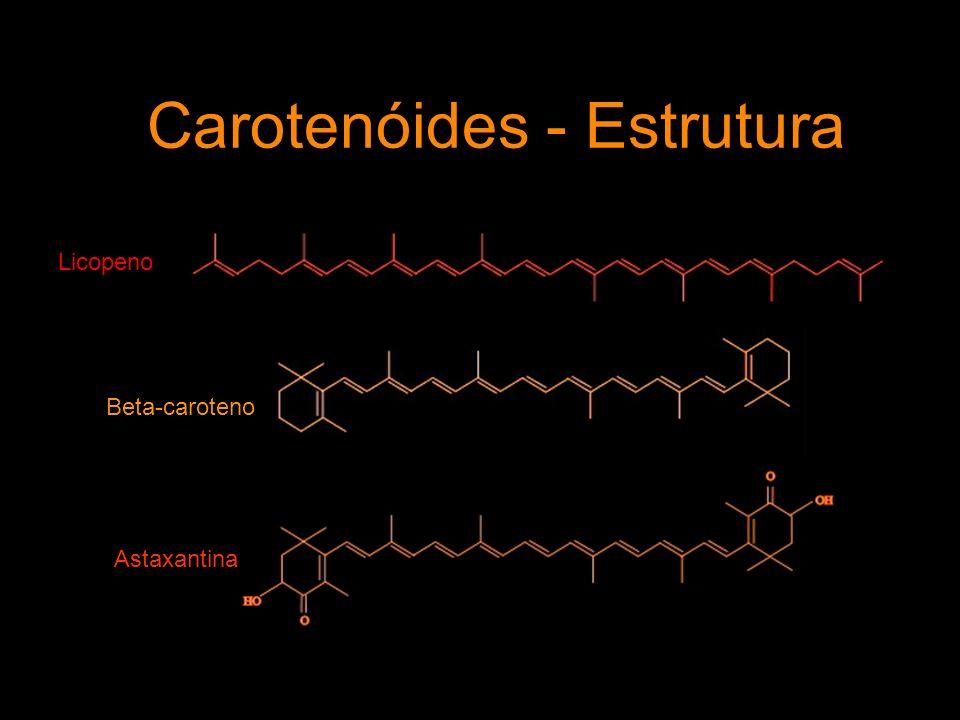 Carotenóides - Estrutura