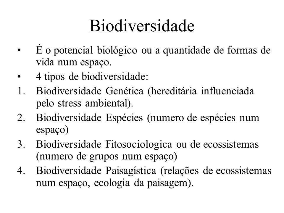 Biodiversidade É o potencial biológico ou a quantidade de formas de vida num espaço. 4 tipos de biodiversidade: