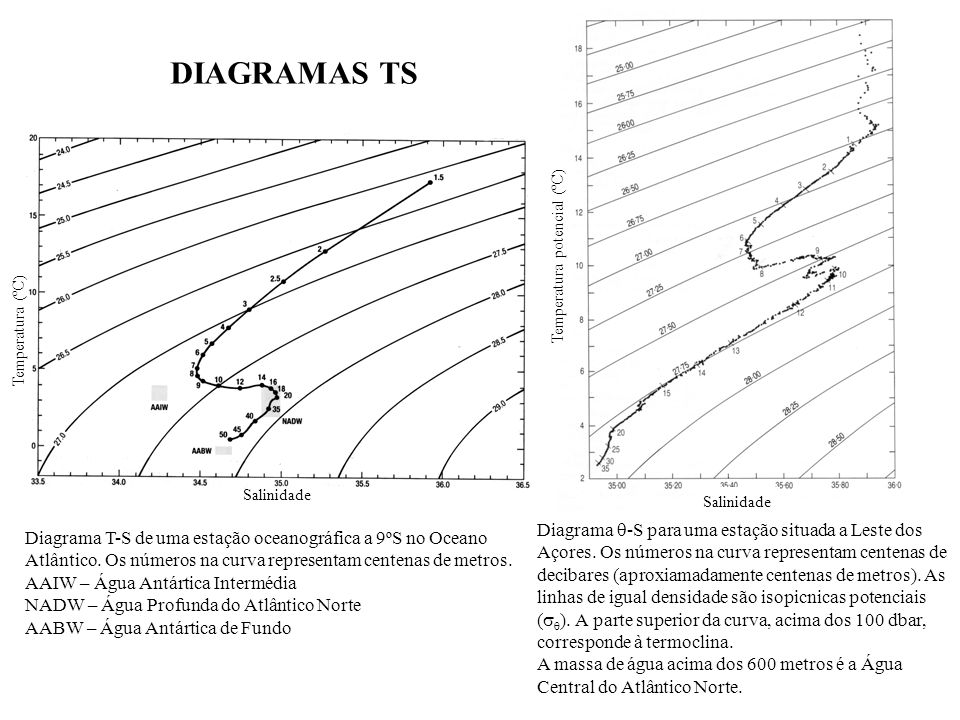 DIAGRAMAS TSTemperatura potencial (ºC) Temperatura (ºC) Salinidade. Salinidade.
