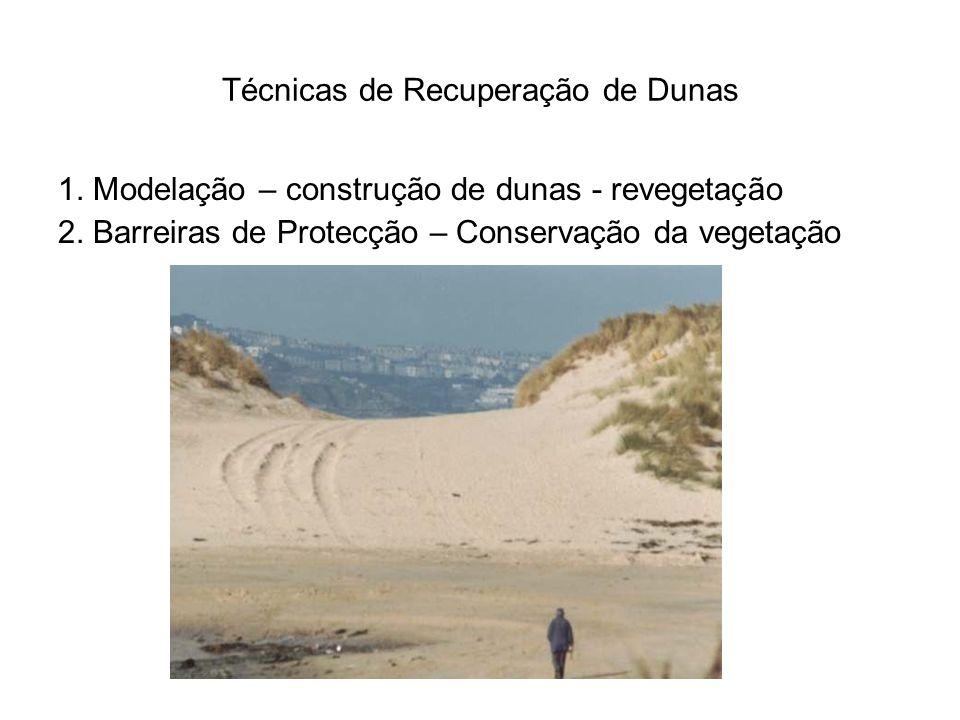 Técnicas de Recuperação de Dunas